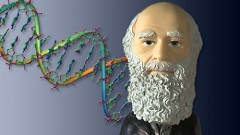 Introduction to Genetics and Evolution