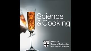 Science and Cooking: From Haute Cuisine to the Science of Soft Matter